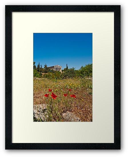 Springtime by Konstantinos Arvanitopoulos