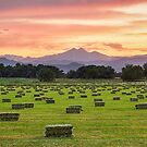 Colorado Farmers Burning Sunset by Bo Insogna