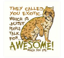Babou is Awesome Art Print