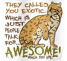 Babou is Awesome Poster