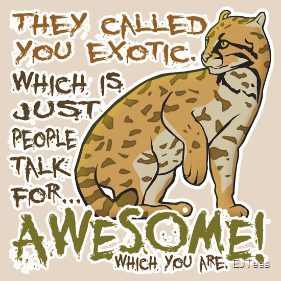 TShirtGifter presents: Babou is Awesome | Unisex T-Shirt