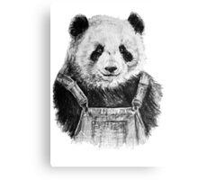 Pandas like dungarees  Canvas Print