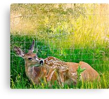 Rexburg Idaho - Manma's Baby Canvas Print