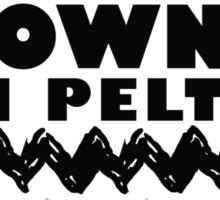 Elect Brown VanPelt '16 Sticker