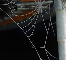 Frozen cobwebs and rusty springs by HannahLstaples