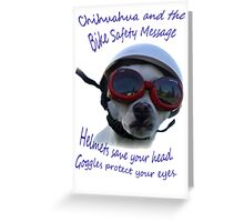 Chihuahua and the Bike Safety Message --New and Improved Tee Greeting Card