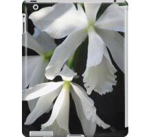 cattleya orchid iPad case iPad Case/Skin