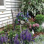 My Garden by wiscbackroadz