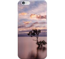 Mangrove Tree at Wellington Point iPhone Case/Skin