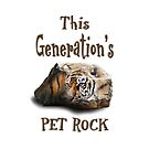 This Generation's Pet Rock - IPad, Tablet, IPhone Cases by Doty