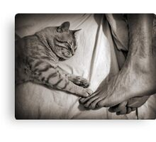 Keeping In Touch Canvas Print