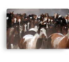 Horses On The Move Canvas Print