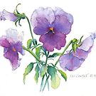 Lavender Pansy by Pat Yager