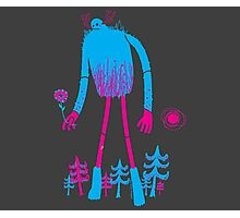 ForestGiant Photographic Print