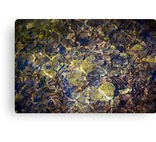 Water shining in the pond Canvas Print