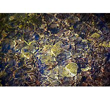 Water shining in the pond Photographic Print