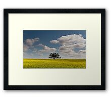 Clouds  For Company Framed Print