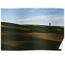 Lone tree over hills Poster