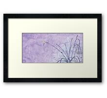 Swallow bird Framed Print