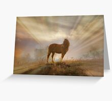 Beautiful Mustang with Backlight Greeting Card