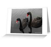 Two Swans Greeting Card
