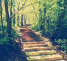 Stairway Into The Forest by perkinsdesigns