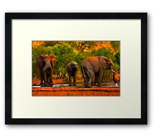Kruger Elephants Framed Print