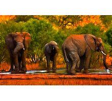 Kruger Elephants Photographic Print