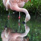 Zaphod Flamingbrox by JohnYoung