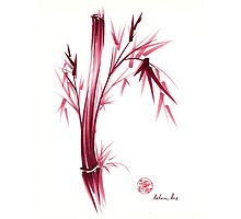 """INSPIRE"" - Original ink brush pen bamboo drawing/painting Photographic Print"