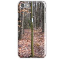 October Mountain Appalachian Trail iPhone Case/Skin
