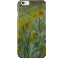 The Old Barn-WC20150713a iPhone Case/Skin