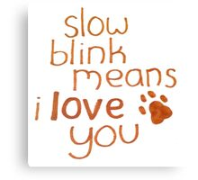 Slow Blink Means I Love You Canvas Print