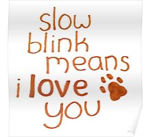Slow Blink Means I Love You Poster