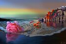 Tidal Flowers by Igor Zenin