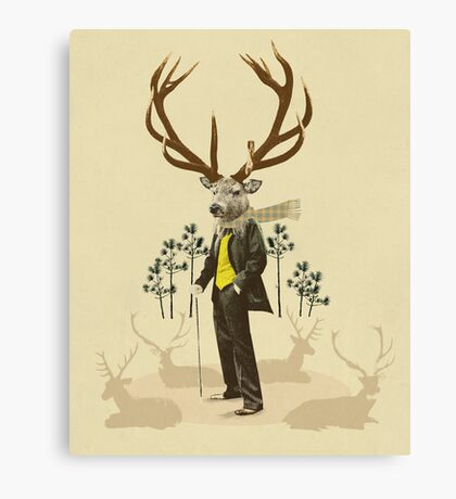 King stag Canvas Print