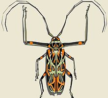 Acrocinus longimanus, (female) by dutchboywonder