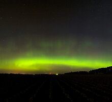 All rows lead to Aurora by Michael Treloar