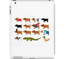 Sneaky Dog and friends iPad Case/Skin