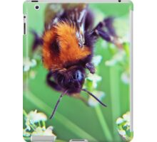 Bee Trouble iPad Case/Skin