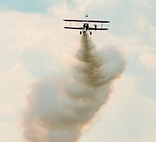 Wing Walker by Mark Bangert