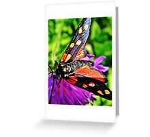 Black butterfly with red polka dots Greeting Card