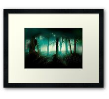 In What Dimension.... Framed Print