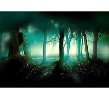 In What Dimension.... Photographic Print