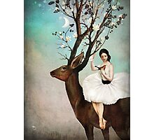 The Wandering Forest Photographic Print
