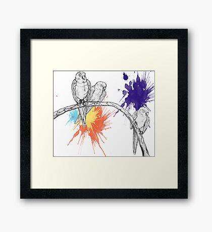 Birds2 Framed Print