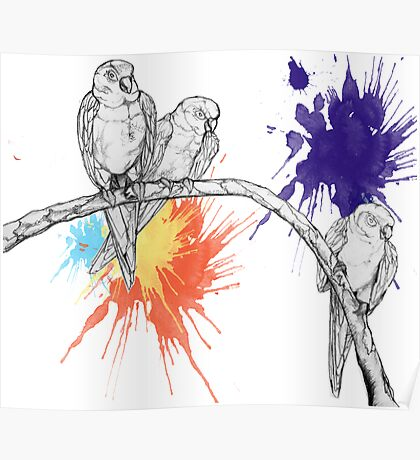 Birds2 Poster