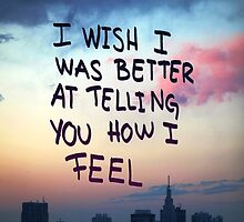 I wish I was better at telling you how I feel.  by Indiesk8ter