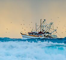 Fishing Trawler at Honeymoon Bay, Moreton Island, Australia by Ann Pinnock