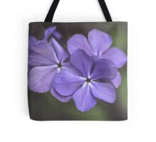 Phlox in the Evening Light Tote Bag